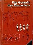 Die Gestalt des Menschen Lehr- und Handbuch der Anatomie für Künstler. Die Originalausgabe erschien unter dem Titel -der Nackte Mensch-