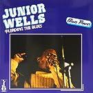 Pleading the Blues [Vinyl LP]