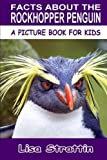 Facts About the Rockhopper Penguin (A Picture Book For Kids, Vol 163)