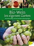 Bio-Wein im eigenen Garten: Wie Anbau, Pflege und Ernte auf kleiner Fläche gelingen