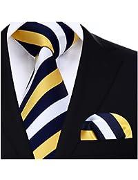 HISDERN Striped Wedding Tie Handkerchief Men's Necktie & Pocket Square Set