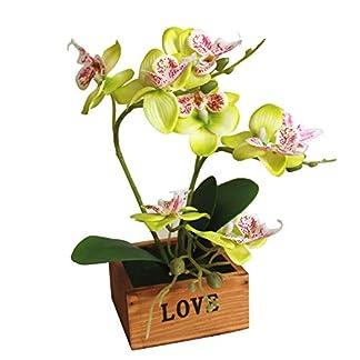 Yunt Phalaenopsis Mariposas Orqu¨ªdeas Bonsai con Maceta de Madera Suministros de Bricolaje Decoraci¨®n para el Hogar Flores de Seda Artificial Ramo de Flores de Seda Plantas Pl¨¢sticas Verde