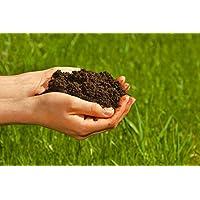 100% natürlichen Wurmhumus kaufen - 20 Liter - Wurmdünger Wurmerde Naturdünger Komposterde (20 Liter)