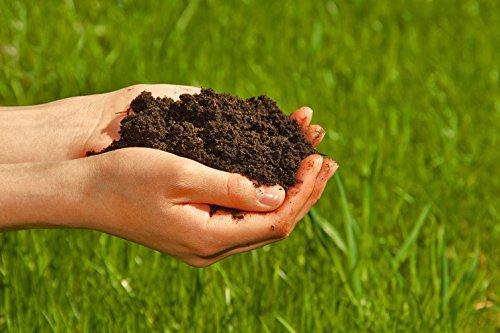 100% natürlichen Wurmhumus kaufen - 10 Liter - Wurmdünger Wurmerde Naturdünger Komposterde (10 Liter)