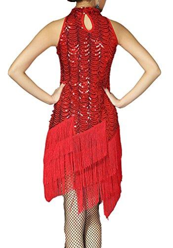 Brinny Paillettenkleid Cocktailkleid Abendkleid 20er Pailletten Bestickt Sequin Feuerwerk Fransen Flapper Kleid Tanzkleid Samba Rumba Tango (Kleider Sexy Tanz)