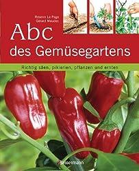 Abc des Gemüsegartens: Richtig säen, pikieren, pflanzen und ernten
