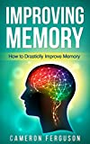 Improving Memory: How to Drastically Improve Memory