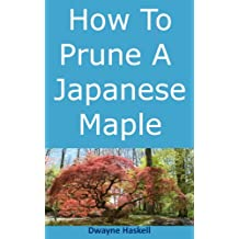 How To Prune A Japanese Maple - A Homeowner's Guide (English Edition)
