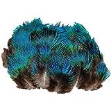 ERGEOB® Plumas de pavo real plumas azules DIY plumas de artesanía 6-8 cm (2-3 pulgadas) Longitud