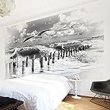 Apalis Vliestapete Nummer YK3 Absolut Sylt II Fototapete Breit | Vlies Tapete Wandtapete Wandbild Foto 3D Fototapete für Schlafzimmer Wohnzimmer Küche | grau, 107853