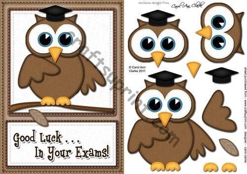 A5Wise Owl Exam Good Luck Felties rapido della 3D Decouopage by Carol Clarke
