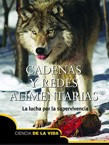 Cadenas redes alimentarias: Food Chains and Webs Let's