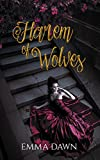 Harem of Wolves (Stairway to Harem Book 2) (English Edition)