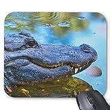 Gaming Mauspad rutschfest Gummi Mauspad Rund Mauspad für Computer Laptop Mauspad Alligator mit...