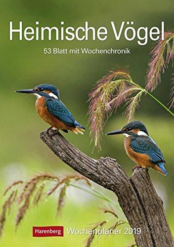 Heimische Vögel - Kalender 2019: Wochenplaner, 53 Blatt mit Wochenchronik