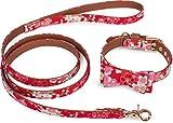 Puccybell Blumen Hundehalsband mit Schleife und Hundeleine (1,2m) im Set, Halsband mit Fliege und Leine für kleine und mittelgroße Hunde HLS005 (S, Rot)