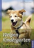Welpenkindergarten: Prägung, Sozialisation und Erziehung (Praxiswissen Hund)