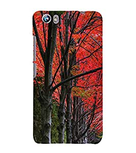 Beautiful Trees 3D Hard Polycarbonate Designer Back Case Cover for Micromax Canvas Fire 4 A107