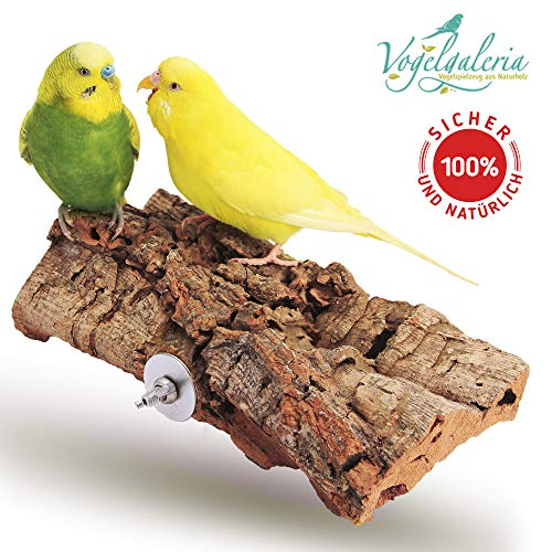 Vogelgaleria® Tolles Korksitzbrett groß für Vögel | Wellensittich Kork Sitzbrett 20x10 cm als perfektes Zubehör im Käfig | Kork Rinde ist EIN großartiges Spielzeug für Nymphensittich und Papagei -
