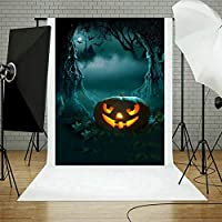 Yangshan 1PC Halloween Decoration Photo Background Backdrop for Studio Vedio Shooting Prop Cloth Photography Backdrops (Color : Christmas N, Size : 90x150cm)