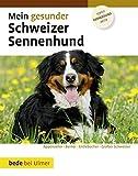 Mein gesunder Schweizer Sennenhund bei Amazon kaufen