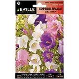 Batlle - Semillas de Flores Campanula Bisanual Flor Grande Doble Variada