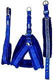 Petshop7 Nylon Blue Fur 1 Inch Medium Dog Harness, Dog Collar & Leash (Chest Size : 25-30Inch)