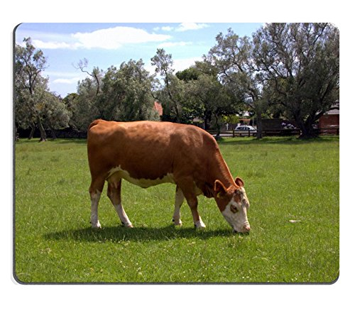 souris-ferme-vache-ecorchures-sur-le-pre-vert-image-didentite-39234510-par-liili-souris-personnalise
