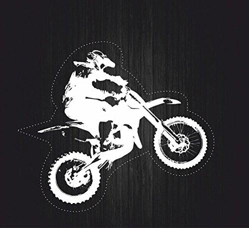 Akachafactory Autocollant Sticker Biker Voiture Moto Casque as de pic Motard Tete de Mort R3