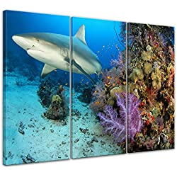"""Bilderdepot24 Cuadros en Lienzo """"tiburón"""" - 150 x 90 cm 3 piezas - listo tensa, directamente desde el fabricante"""