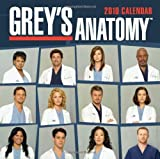 Grey's Anatomy: 2010 Wall Calendar by LLC Andrews McMeel Publishing (2009-08-01)