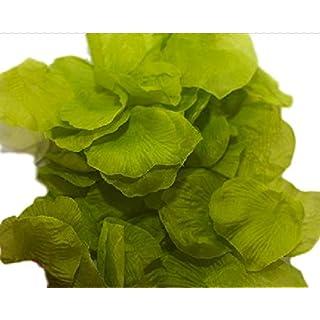 Accessori Vari Silk Rose Petals Pack of 288 green