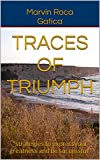 TRACES OF TRIUMPH: 'strategies to express your greatness and be successful' (English Edition)