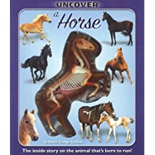 Uncover a Horse (Uncover It)