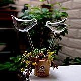 Siyaglass, dispositivo di auto irrigazione per piante a forma di uccello in vetro trasparente soffiato durevole, set con 2 mini uccelli