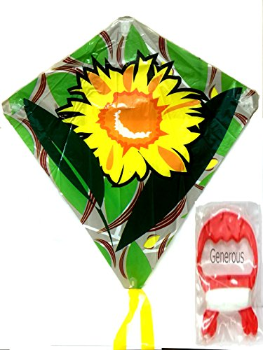 Super Schmetterling Flyer Kite 60 x 66 cm Set von 1 Kite - Flyer Kite