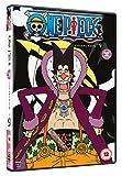 One Piece (Uncut) Collection 9 (Episodes 206-229) [DVD] [UK Import]