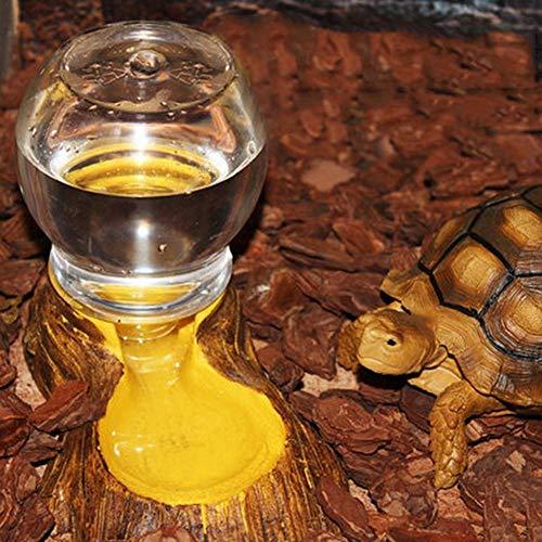 Yunhigh Wasserflasche Feeder Reptil Auto Dispenser Hamster Schildkröte, Schildkröte Haustier Kleintiere Wasserbehälter Box Landschaftsbau Dekoration
