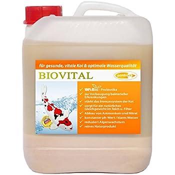 Koipon milchs urebakterien 5 l f r teich und gartenteich for Fischteich algen entfernen