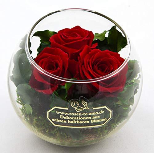 Echte Rosen Blumenstrauß - Muttertag Geschenk - aus 3 Konservierte Rosen 3 Jahre haltbar ohne Wasser - Infinity Rosen-Kugel