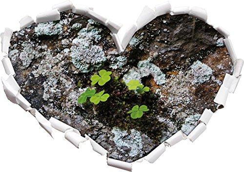 trfles-dlicates-sur-la-forme-de-coeur-de-sol-calcaire-dans-le-regard-3d-mur-ou-un-autocollant-de-por