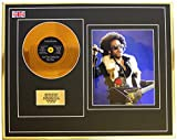 Everythingcollectible Lenny Kravitz/Mini Metal Gold Disc & Photo Display/ÉDITION LIMITÉE/COA/are You Gonna GO My Way