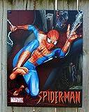 Poster Revolution Spiderman Marvel Comic Film BLECHSCHILD USA S1263