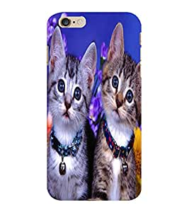 ColourCraft Cute Kittens Design Back Case Cover for APPLE IPHONE 6S PLUS