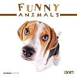 Funny Animals 2017 - Broschürenkalender