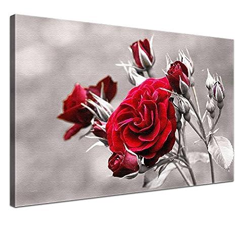 Lana KK - Rose Red - edel Leinwand Bild Kunstdruck auf Keilrahmen, fertig gerahmt in 120x80 cm, einteilig