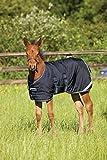Horseware Amigo Couverture pour poulain