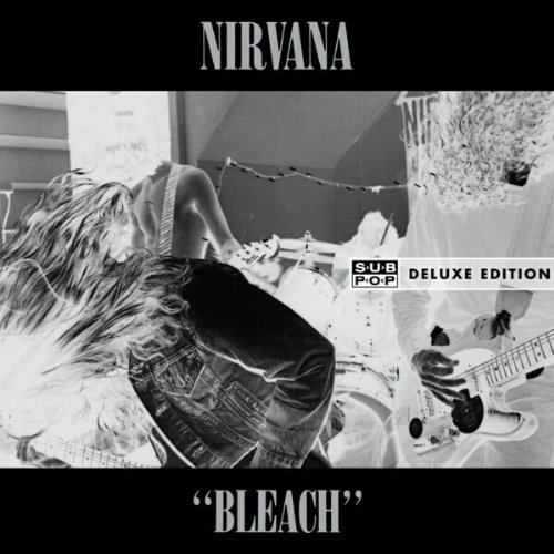 bleach-ltddeluxe-edition