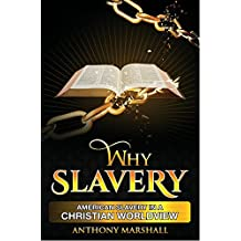 Why Slavery?: American Slavery in a Christian Worldview (English Edition)