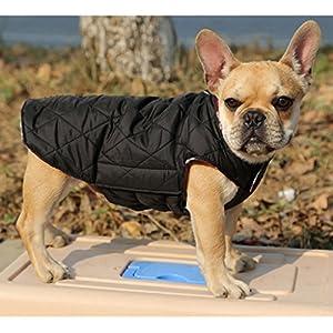 Sharplace Haustier Warmer Winter Kleidung Wasserdichter Hundemantel - Grün, M